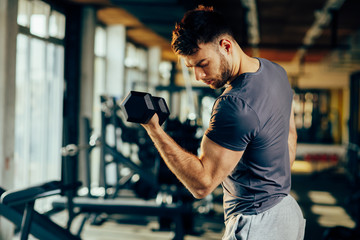 Handsome man doing biceps lifting with dumbbell in a gym