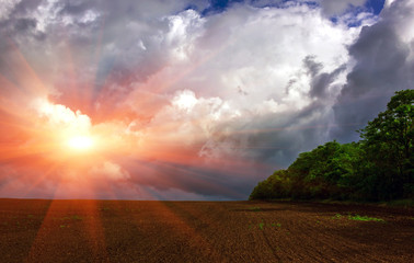 field on a background of storm clouds at sunset .