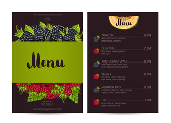 Vegetarian restaurant food menu design vector illustration. Vegan cafe menu, price catalog of vegetarian nutrition, natural sweet food, organic shop. Menu card template with raspberry and blackberry