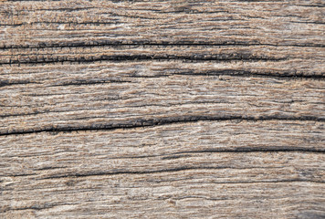 Cracked wood texture background