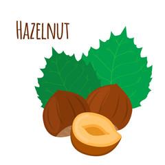 Hazelnut. Cartoon forest natural nut, organic ripe hazel, green leaves.