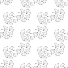 Ginkgo Biloba plant, leaf, branch, berry. Seamless pattern, medicinal plant. Hand drawn sketch illustration. Ingredient for hair and body care cream, lotion, treatment.