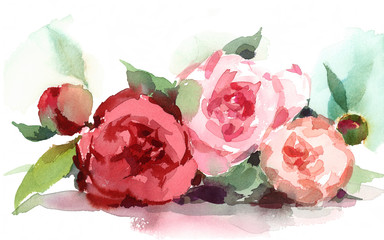 Watercolor Peonies Summer Flowers Hand Painted Floral Header Banner Wedding Illustration