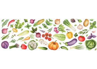Watercolor vegetables and herbs isolated on white background.