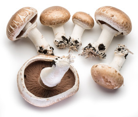 Champignon mushrooms on the white background.