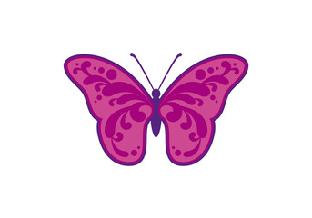 Butterfly abstract vector. Decorative purple butterfly. Butterfly on a white background. Icon of abstract butterfly