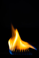 Gas burns on the burner on the stove in the dark. Selective focus