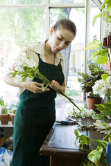 Female florist arranging flowers in shop