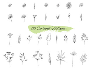 A collection of handmade sketches with plants.