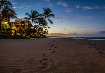 Wall Mural - Maui sunset on beach