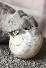 victim in pompeii of the eruption of mt vesuvius