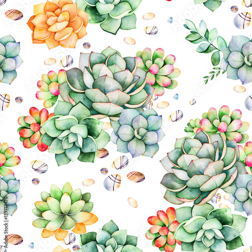 Colorful seamless pattern with succulents plants pebble stones colorful seamless pattern with succulents plants pebble stonesbranches and morerfect for m4hsunfo