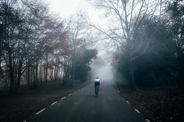 A silhouette of a cyclist riding in the foggy and misty forest road