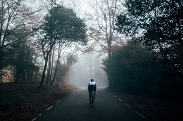 A professional male cyclist riding his bike in a dark autumn forest in the fog