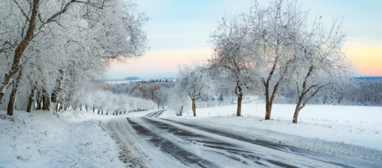 Winter Landscape with a snowy road and frosty trees