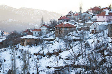 Village houses in winter