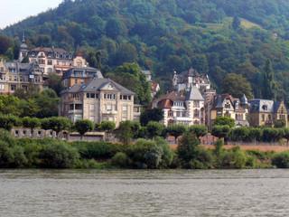 Neckar riverbank 1917