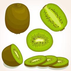Vector kiwi. Set of whole, sliced, half of a kiwifruit isolated on white background. Vector illustration.