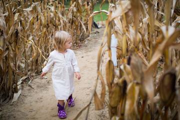 Girl walking in cornfield