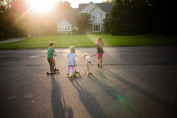 Children with dog playing on scooters in driveway