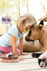 Girl head to head with goat at petting zoo