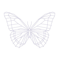 Geometric linear butterfly. Vector illustration