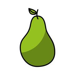 pear fresh fruit drawing icon vector illustration design