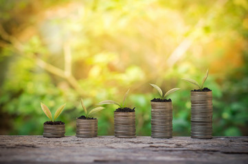 Plants growing up on stack of coins for business investment or saving concept
