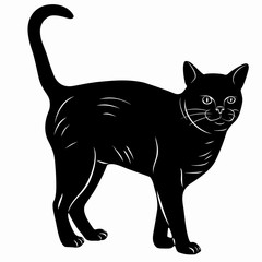 illustration of a cat, vector draw