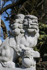 狛犬 氏神さんの狛犬です。凛々しい顔をしています。