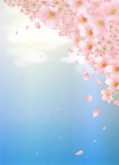 桜と雲と青空