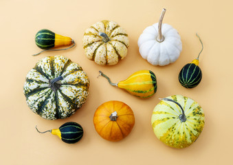 Pumpkins on orange background.