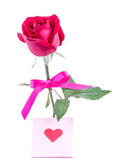 Red rose with message card Image of Valentines day