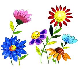 Hand drawn flower illustration