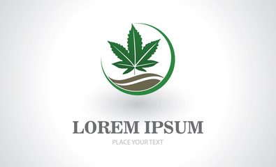 marijuana leaf vector logo