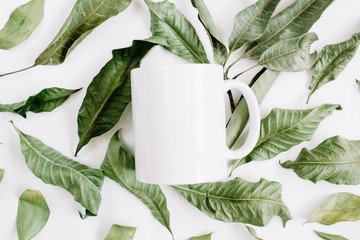 Blank template of white mug and green leaves on white background. Flat lay, top view.
