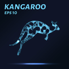Kangaroo consists of points, lines and triangles. The polygon shape in the form of a silhouette of a kangaroo on a dark background. Vector illustration. Graphic concept kangaroo
