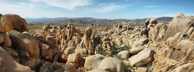 Rocks in Joshua Tree National, California