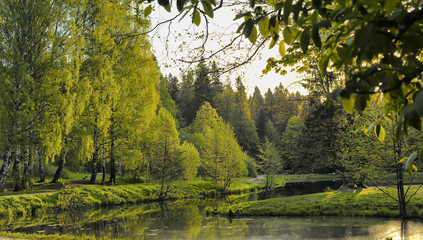 Bank of the river in the summer. Lanscape