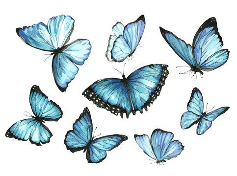 Blue Butterflies. Set. Watercolor illustration