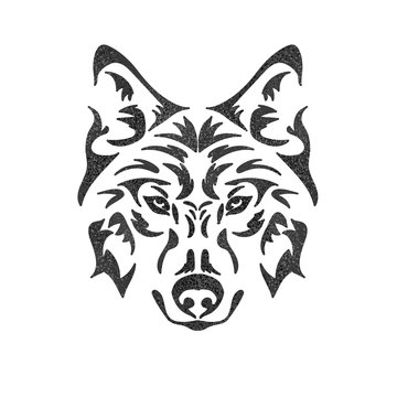 Isolated muzzle of a wolf