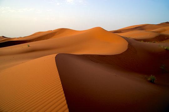 apricot Sahara desert sand dunes morocco Africa sunrise sunset
