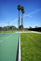 palm trees at public park with basketball courts