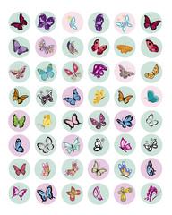 BOTLE CAP butterflies 5
