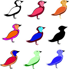 set of funny colorful birds