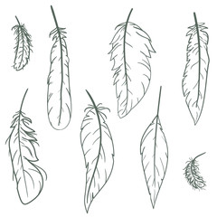 Set of hand drawn feathers on white background. Vector illustration in vintage retro style.