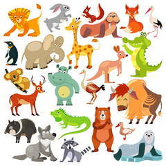 Set of funny animals, birds and reptiles from all over the world. World fauna. For alphabet.  Illustration