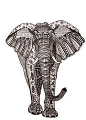 Doodle illustration elephant isolated on white background.