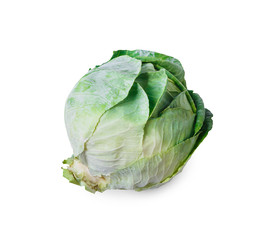 One ripe fresh green cabbage isolated on white background