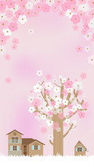 Cherry blossoms in pink A